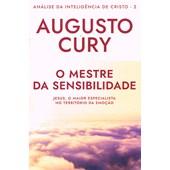 Análise da Inteligência de Cristo - Vol. 2 - O Mestre da Sensibilidade - Nova Edição