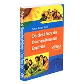 Desafios da Evangelização Espírita