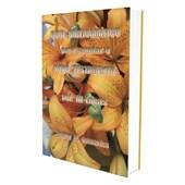 Guia Bibliográfico para Estudar o Novo Testamento - Vol III