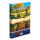 Líder Espírita (O) - Volume 2