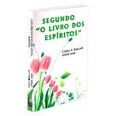 Segundo O Livro dos Espíritos
