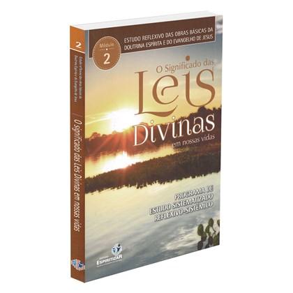 Significado das Leis Divinas em Nossas Vidas (O) - Estudos reflexivos - Vol. 2